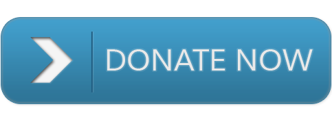 This button will take you to the donate page